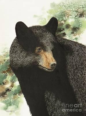 Painting - Black Bear Posing by Frank Townsley