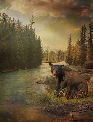 Photograph - Black Bear Storm by Patti Deters