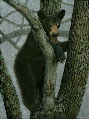 Painting - Black Bear Up A Tree by Susan Donley