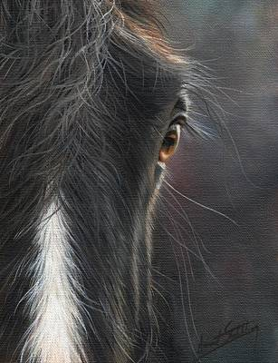 Painting - Black Beauty by David Stribbling