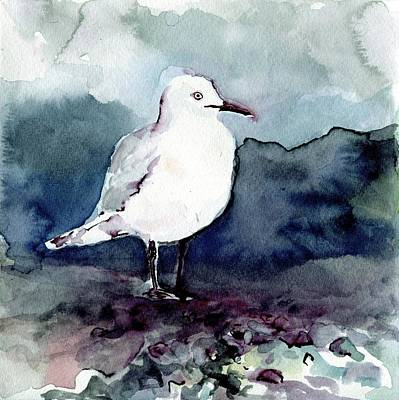 Painting - Black-billed Gull by Abby McBride