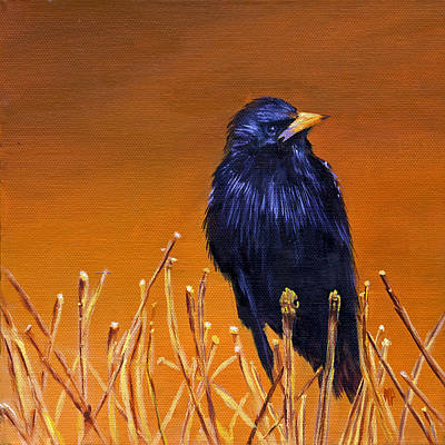 Starlings Painting - Black Bird by Marina Petro
