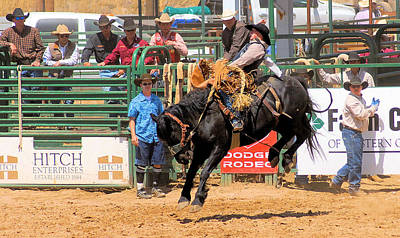 Photograph - Black Bucking Bronc by Cheryl Poland