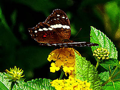 Photograph - Black Butterfly On Yellow Lantana by Susan Savad
