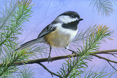 Painting - Black Cap Chickadee by Mike Brown