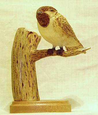 Black-capped Chickadee Original by Russell Ellingsworth