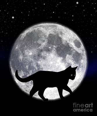 Photograph - Black Cat And Full Moon 2 by Nina Ficur Feenan