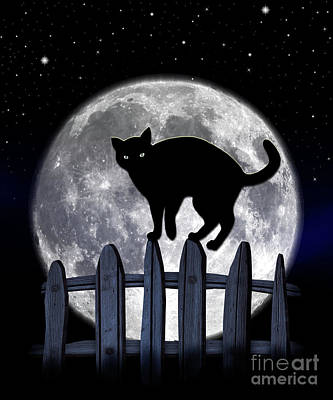 Photograph - Black Cat And Full Moon 3 by Nina Ficur Feenan