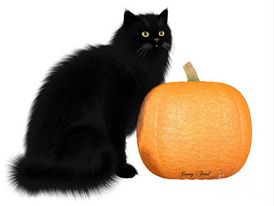 House Pet Digital Art - Black Cat And Pumpkin by Corey Ford