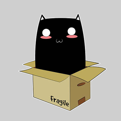 Black Cat In A Box Original