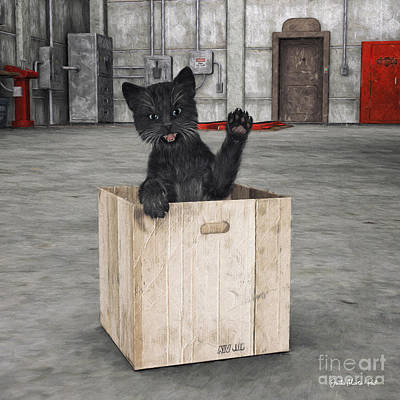 Digital Art - Black Cat In A Box by Jutta Maria Pusl
