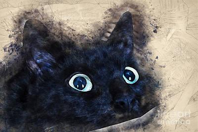 Cat Painting - Black Cat by Justyna JBJart