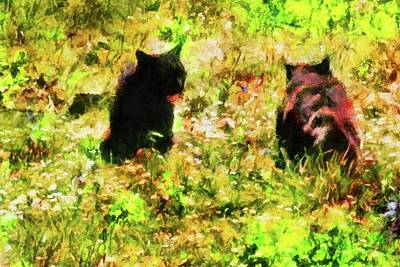 Photograph - Black Cat Stand Off by Dorothy Berry-Lound