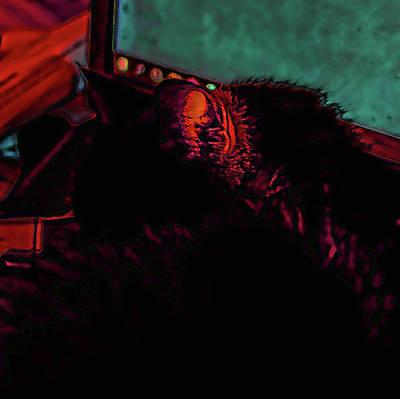 Digital Art - Black Cat - Sun Tipped Ear by Aliceann Carlton