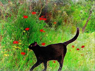 Photograph - Black Cat With Poppies by Dorothy Berry-Lound