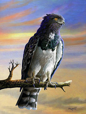 Painting - Black Chested Snake Eagle by Anthony Mwangi