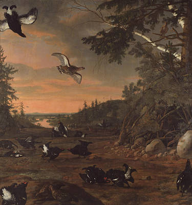 Painting - Black Cocks At Ground by David Klocker Ehrenstrahl