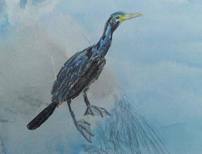 Wall Art - Painting - Black Cormorant by Helen Krummenacker