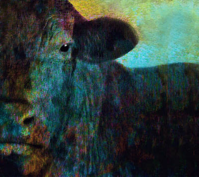 Photograph - Black Cow Two  by Ann Powell