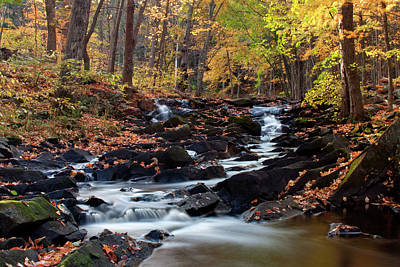 Photograph - Black Creek In Autumn I 2015 by Jeff Severson