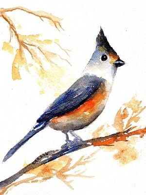 Painting - Black Crested Titmouse by Carlin Blahnik