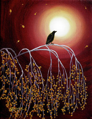 Black Crow On White Birch Branches Print by Laura Iverson