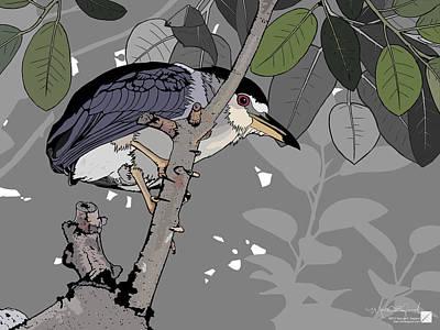 Digital Art - Black-crowned Night-heron by Marcus England