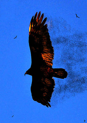 American Eagle Painting - Black Eagles Vision by David Lee Thompson