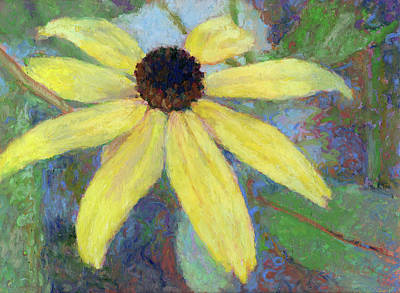 Pastel - Black Eyed Susan by Betsy Derrick