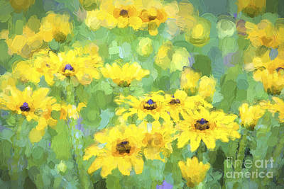Black-eyed Susans Abstract Print by Jan Tyler
