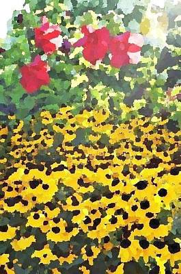 Photograph - Black-eyed Susans - Flowers Of Bethany Beach by Kim Bemis