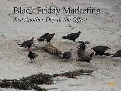 Photograph - Black Friday Marketing by Gary Canant