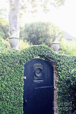 Photograph - Black Garden Door by Heather Green