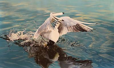 Wall Art - Painting - Black Headed Gull by Julian Wheat