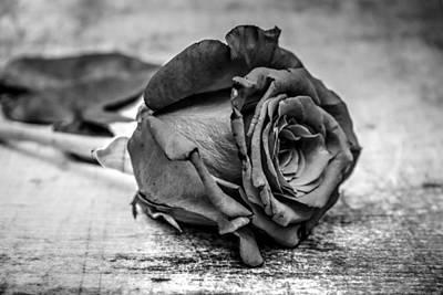 Photograph - Black Heart by Michael Damiani