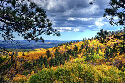 Black Hills Autumn Art Print by Fiskr Larsen