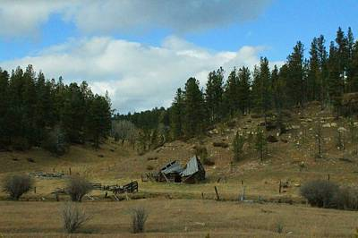 Photograph - Black Hills Broken Down Cabin by Christopher Kirby
