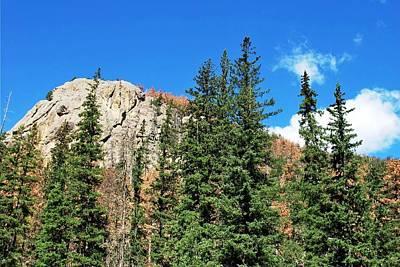 Photograph - Black Hills South Dakota Cliff Forest View by Matt Harang