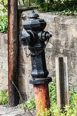 Photograph - Black Hydrant by Kathleen K Parker