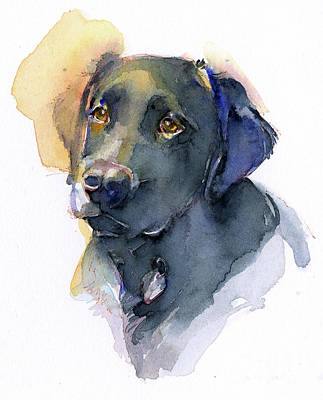 Watercolor Pet Portraits Wall Art - Painting - Black Lab by John Keeling