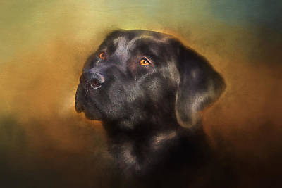 Black Lab Portrait 2 Art Print