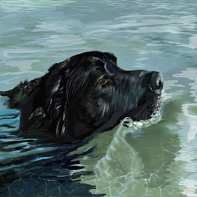 Black Lab Digital Art - Black Lab Swimming by Victoria Newton