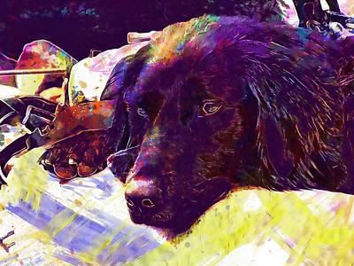 Labrador Digital Art - Black Labrador Dog Retriever Pet  by PixBreak Art