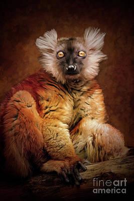 Painting - Black Lemur by Tara Richardson