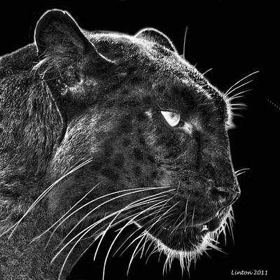 Black Leopard 2 Original by Larry Linton