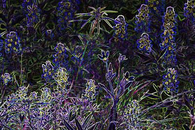 Black Light Wildflowers Art Print by Linda Phelps