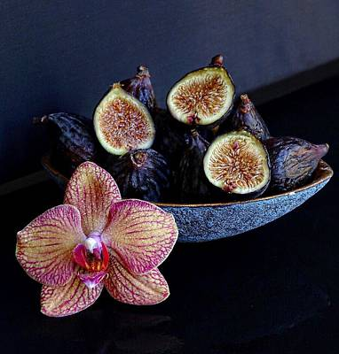 Photograph - Black Mission Figs Still Life by Sarah Phillips