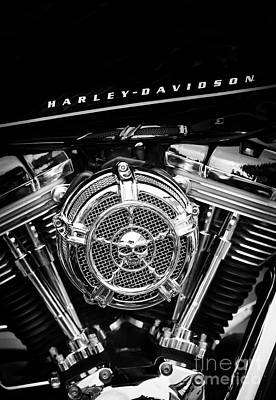 Harley Davidson Photograph - Black N Chrome Hd by Tim Gainey