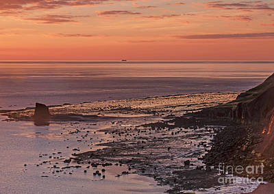 Photograph - Black Nab Saltwick Bay by David  Hollingworth
