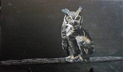 Pastel - Black Owl by Richard Le Page
